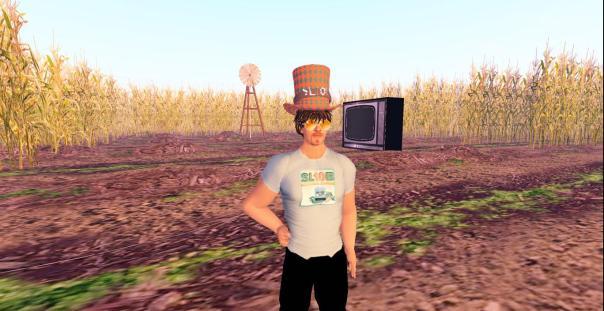 SL10B Corn Field